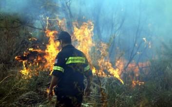 Έσβησαν οι φωτιές σε Κιλελέρ και Φάρσαλα