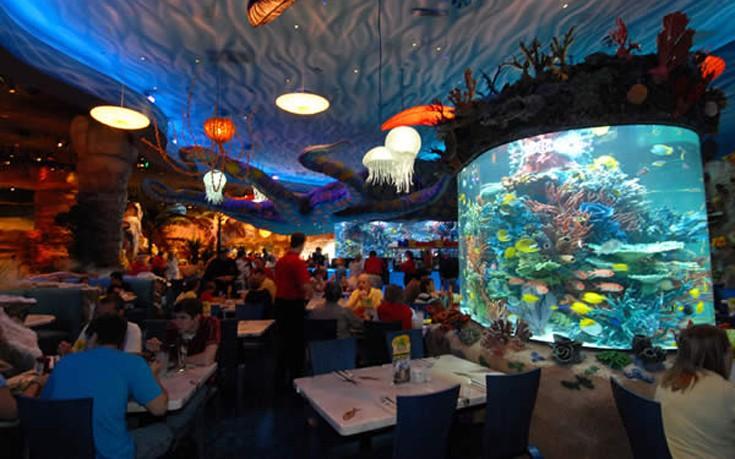 aquariumres4