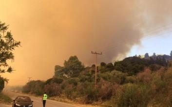 Κοντά σε σπίτια η μεγάλη πυρκαγιά στη Χαλκιδική