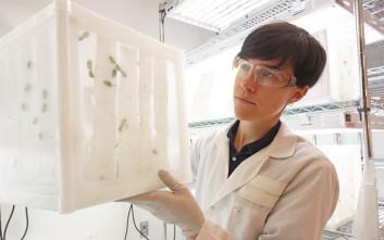 Συνεργασία Bayer και ΙΜΒΒ-ΙΤΕ για καινοτόμες λύσεις κατά των εντόμων