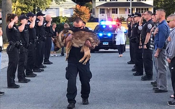 Το τελευταίο αντίο αστυνομικού στον τετράποδο συνεργάτη του