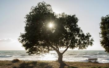Το καλοκαίρι επιμένει στο Καλό Νερό Μεσσηνίας