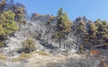 Εικόνες από την επόμενη μέρα της πυρκαγιάς στην Κασσάνδρα