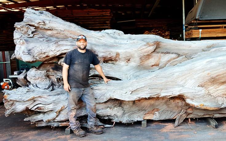 Μετέτρεψε ένα κορμό δέντρου σε ένα θαλάσσιο αριστούργημα