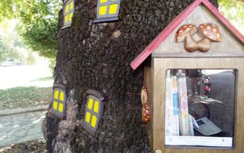 Ένα «βιβλιοδέντρο» στο Μουσείο Τσιτσάνη
