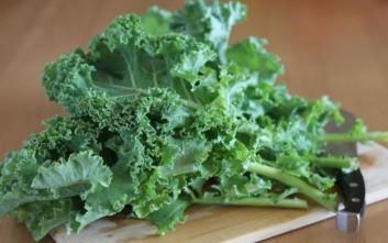 Η διατροφική αξία της λαχανίδας