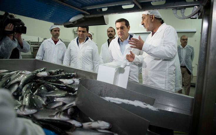Ο Τσίπρας στα ψάρια της Θεσπρωτίας