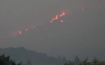 Στους 31 έφτασαν οι νεκροί από τις πυρκαγιές στην Καλιφόρνια
