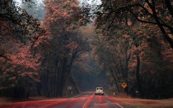 Η Καλιφόρνια μετρά 38 νεκρούς από τις φονικές πυρκαγιές