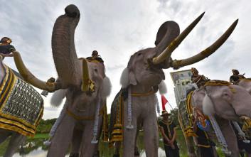 Ο βασιλιάς της Ταϊλάνδης κηδεύεται έναν χρόνο μετά τον θάνατό του