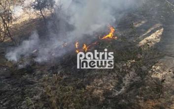 Δύο φωτιές και έρευνες για τους εμπρηστές στην Ηλεία