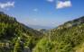Ανάβαση στη Δίρφη, το ψηλότερο βουνό της Εύβοιας