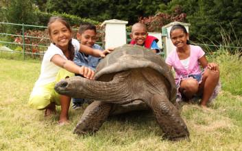 Η μακροχρόνια σχέση της γηραιότερης χελώνας στον κόσμο είναι… ομοφυλοφιλική