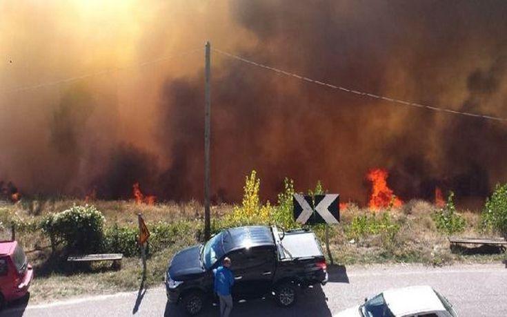 Μπακογιάννης: Δίνουμε μάχη με τη φωτιά, ζήτησα ελικόπτερα από τον αρχηγό της Πυροσβεστικής