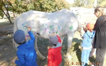 Αντιδράσεις για παιδικό σταθμό που έβαλε παιδιά να ζωγραφίσουν σε άλογο