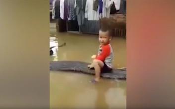 Ένας 3χρονος στο Βιετνάμ «καβαλάει» ένα τεράστιο φίδι