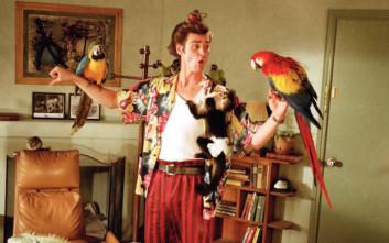 Φουντώνουν οι φήμες για νέο «Ace Ventura», στα κάρβουνα οι φαν για τον Τζιμ Κάρεϊ