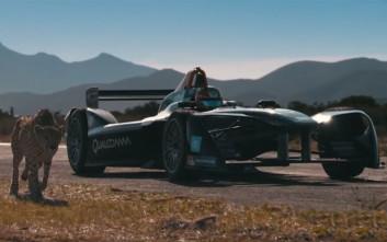 Ποιος θα νικήσει στον αγώνα ταχύτητας μεταξύ Formula E και ενός τσίτα