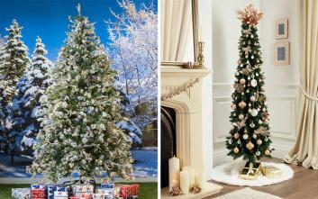 Ποιο χριστουγεννιάτικο δέντρο κοστίζει 17 και ποιο 500 ευρώ;
