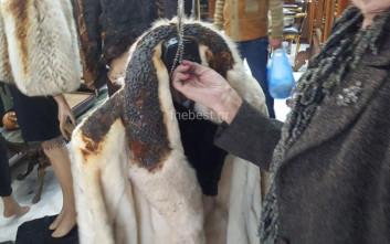 Η ελληνική γούνα έχει την δική της ταυτότητα στο παγκόσμιο εμπόριο