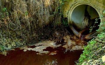 Έλεγχοι σε ελαιοτριβεία της Φθιώτιδας για τα απόβλητα