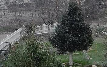 Χιόνισε μέσα στην πόλη των Ιωαννίνων