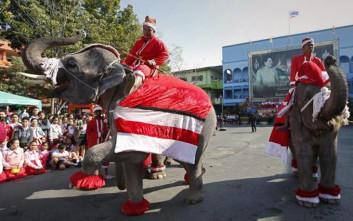 Ελέφαντες ντυμένοι Άγιος Βασίλης στην Ταϊλάνδη
