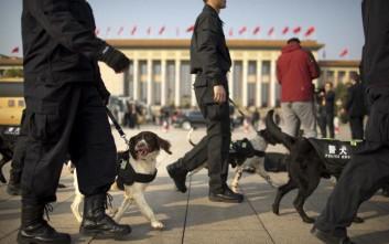 Οκτώ συλληφθέντες για πώληση δηλητηριασμένων συρίγγων για θανάτωση σκύλων