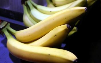 Το κοντέινερ με τις μπανάνες έκρυβε εκπλήξεις
