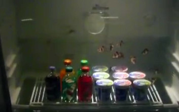 Μετέτρεψε το ψυγείο του σε κάτι εντυπωσιακό
