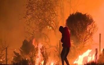 Άνδρας σώζει ένα κουνέλι από τις φλόγες στην Καλιφόρνια