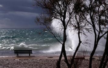 Πτώσεις δέντρων από τους ισχυρούς ανέμους στην Αττική