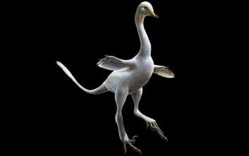 Ο αμφίβιος σαρκοβόρος δεινόσαυρος με… λαιμό κύκνου και πόδια πάπιας