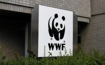 WWF: Η Ελλάδα επεκτείνει το «δίχτυ προστασίας» της ελληνικής και της μεσογειακής φύσης