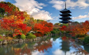 Το ρεκόρ με το μεγαλύτερο όργιο στον κόσμο, διατηρεί από το 2006 η Ιαπωνία με τη συμμετοχή 500 ατόμων.