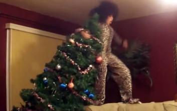 Χριστουγεννιάτικα δέντρα με άδοξο τέλος