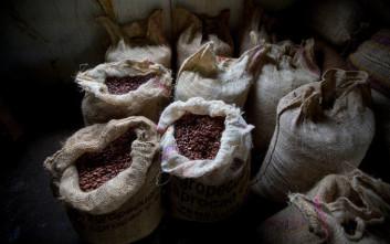 Η αγαπημένη μας σοκολάτα απειλείται με… εξαφάνιση