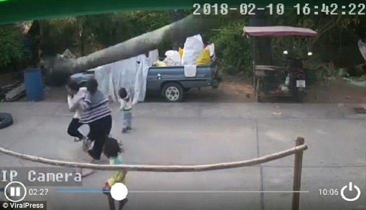 Φοίνικας 30 μέτρων πέφτει χιλιοστά πάνω από 2χρονο αγοράκι