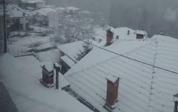 Πάνω από 40 εκατοστά το χιόνι στο Μέτσοβο
