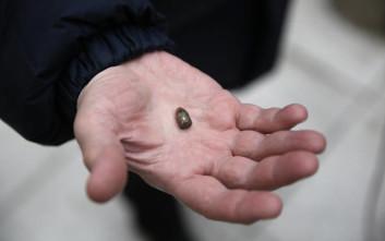 Γονείς διαμαρτυρήθηκαν με αδέσποτες σφαίρες στα χέρια στο Μενίδι