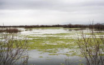 «Πάγωσαν από το κρύο τρεις μετανάστες κοντά στον ποταμό Έβρο»