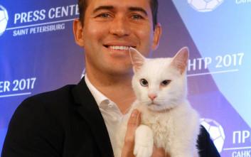 Ο Αχιλλέας, o κουφός γάτος, θα προβλέπει τα αποτελέσματα του Μουντιάλ