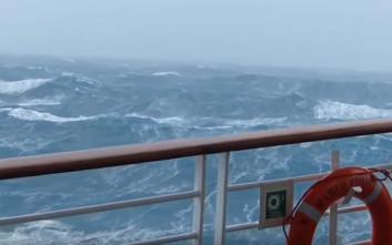 Οι γίγαντες των θαλασσών στα δύσκολα
