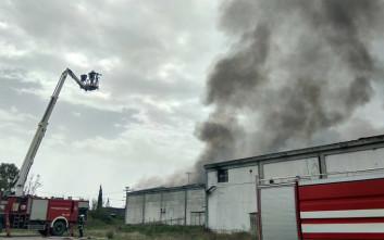Έκρηξη προκάλεσε την πυρκαγιά σε ψυκτικές εγκαταστάσεις