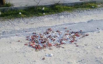 «Μπάλωσαν» λακκούβες σε δρόμο με σπασμένα πιάτα και γαρύφαλλα από μπουζουξίδικο