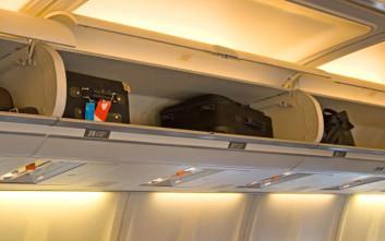 Σκύλος πέθανε στη διάρκεια πτήσης τοποθετημένος στο ντουλαπάκι των χειραποσκευών