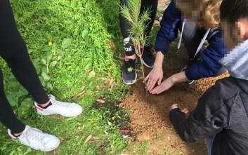 «Πρασινίζουν» τα σχολεία του δήμου Κορυδαλλού