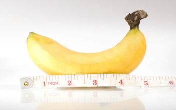 Μελέτη έρχεται να συνδέσει το μέγεθος του πέους με τη γονιμότητα