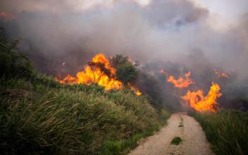 Τέσσερα βίντεο για το πώς να προστατευτούμε από τις πυρκαγιές