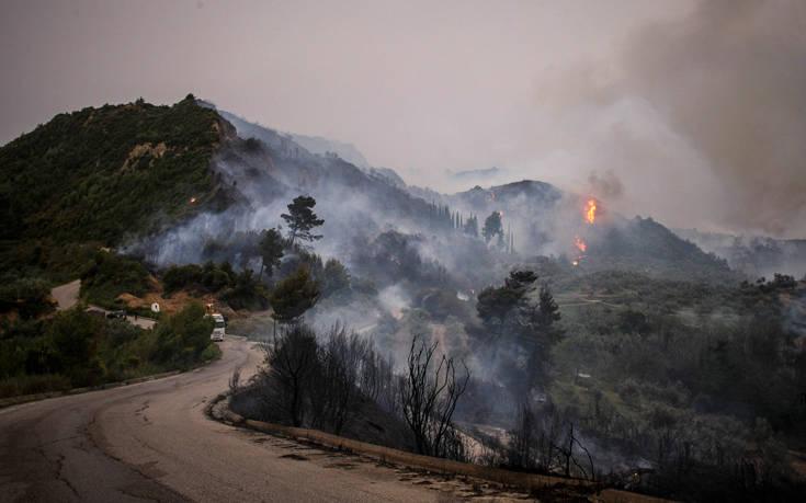Χωρίς ενεργό μέτωπο η φωτιά στην Ηλεία
